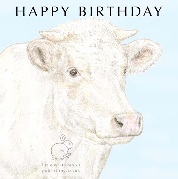 Jacqueline the Cow - Birthday Card