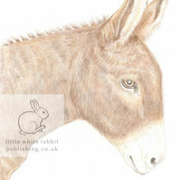 Dougal the Donkey - Blank Card