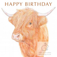 Highland Cow - Birthday Card