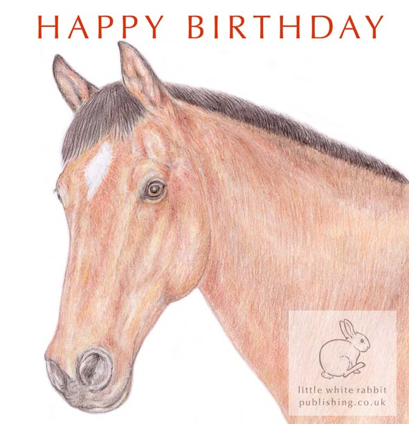 Bracken the Brown Horse - Birthday Card