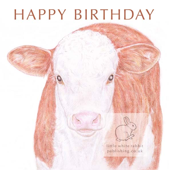 Hereford Calf - Birthday Card