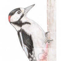 Woodpecker - Birthday Card