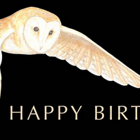 Barn Owl - Birthday Card