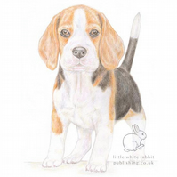 Betty the Beagle - Blank Card