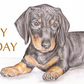 Henry the Dachshund - Birthday Card
