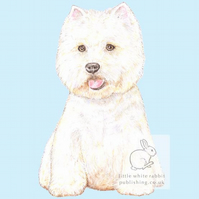Rupert the Westie on Blue - Blank Card