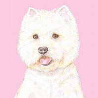 Rupert the Westie on Pink - Birthday Card