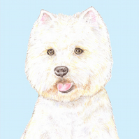 Rupert the Westie on Blue - Birthday Card