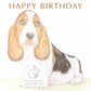 Howard the Basset Hound - Birthday Card