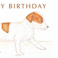 Jill the Jack Russell - Birthday Card