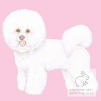 Mimi the Bichon Frise on Pink - Blank Card