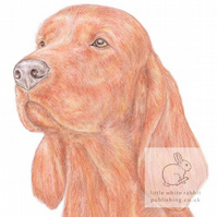 Woody the Irish (Red) Setter - Blank Card