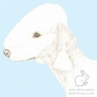 Roxy the Bedlington Terrier on Blue - Blank Card