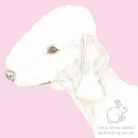 Roxy the Bedlington Terrier on Pink - Blank Card