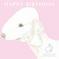 Roxy the Bedlington Terrier on Pink - Birthday Card