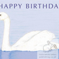 Swan - Birthday Card