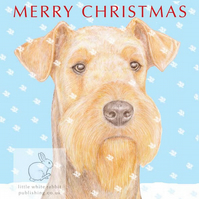 Angus the Airedale Terrier - Christmas Card