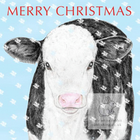 Black & White Calf - Christmas Card