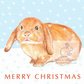 Flossie the Bunny - Christmas Card