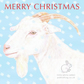 Goat - Christmas Card