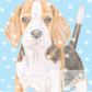 Betty the Beagle - Christmas Card