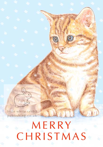 Timmy the Kitten - Christmas Card