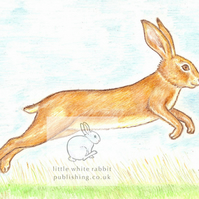 Leaping Hare - Blank Card