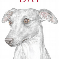 Jim the Whippet - Father's Day Card