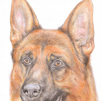 Rex the German Shepherd - Father's Day Card