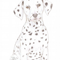 Dot the Dalmatian - Father's Day Card