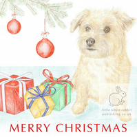 Muffin the Little Dog - Christmas Card