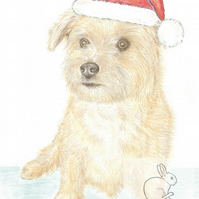 Muffin the Little Dog - Christmas Hat Card