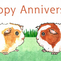 Guinea Pigs - Anniversary Card