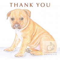 Cookie the Staffie - Thank You Card