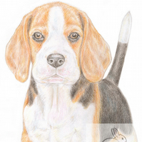Betty the Beagle -Thank You Card