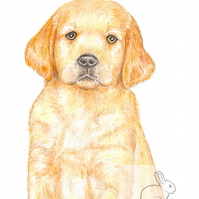 Dexter the Golden Retriever Puppy - Thank You Card