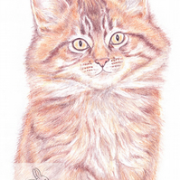 Moppet the Kitten -  Easter Card