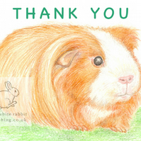 Amber the Guinea Pig - Thank You Card