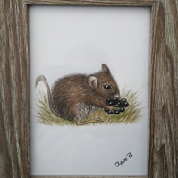 Hand drawn framed field mouse wall art