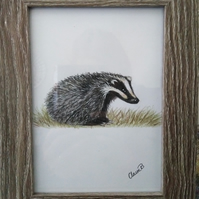 Hand drawn framed badger wall art
