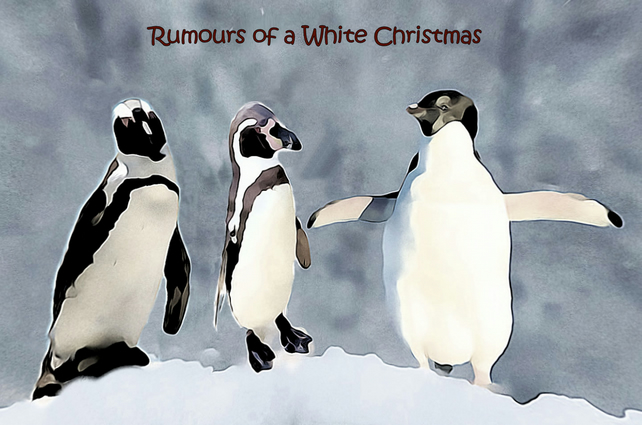 "Penguins Christmas Card, Christmas Hat, 6"" x 6"" 15.24 x 15.24cm"