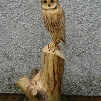 Chainsaw..wood carving ...Garden sculpture owl