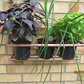 Wall Planter, hand made from 15mm Copper Tube