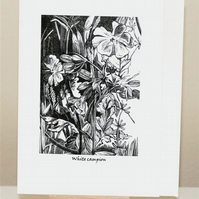 'White Campion' Greetings Card from an original wood engraving