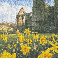 Daffodils at Bolton Abbey. Beautiful, mounted, machine embroidered work of art.