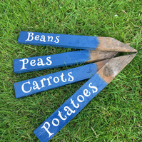 Handcrafted Wooden Plant Markers