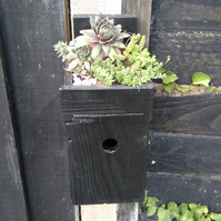 Bird House with Planter