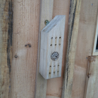 Bee home, bug hotel, insect house
