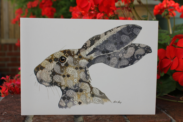 Paisley Hare 1