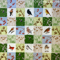 Winter hedgerow birds patchwork kit - 49 patches